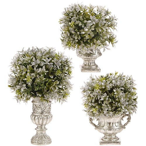Review Set of 3 Boxwood