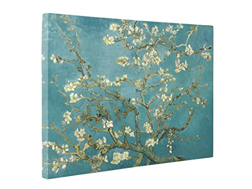 Niwo Art (TM - Almond Blossom, by Vincent Van Gogh - Oil Painting Reproductions - Giclee Canvas Prints Wall Art for Home Decor, Stretched and Framed Ready to Hang (16 -