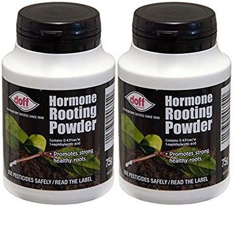 2 x Doff® Hormone Rooting Powder 75g - Help New Roots On Cuttings and Promotes Strong Healthy Roots