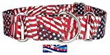 Country Brook Design1 1/2 Inch Patriotic Tribute Martingale Dog Collar - Large