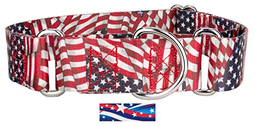 Stripe Martingale Dog Collar - Country Brook Design1 1/2 Inch Patriotic Tribute Martingale Dog Collar - Large