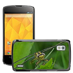 Hot Style Cell Phone PC Hard Case Cover // M00112758 Dragonfly Insect Animal // LG Nexus 4 E960