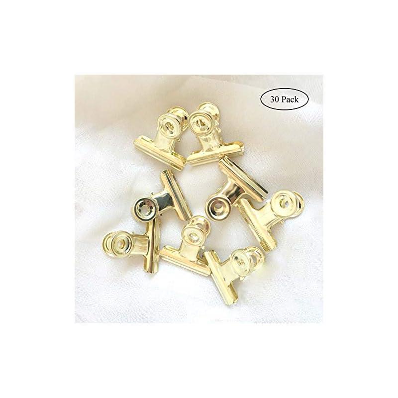 small-bulldog-hinge-clips-coideal