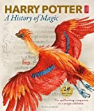 Harry Potter: A History of Magic: The spellbinding companion to a unique exhibition