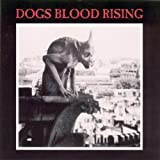 Dogs Blood Rising by Current 93 (2008-11-18)