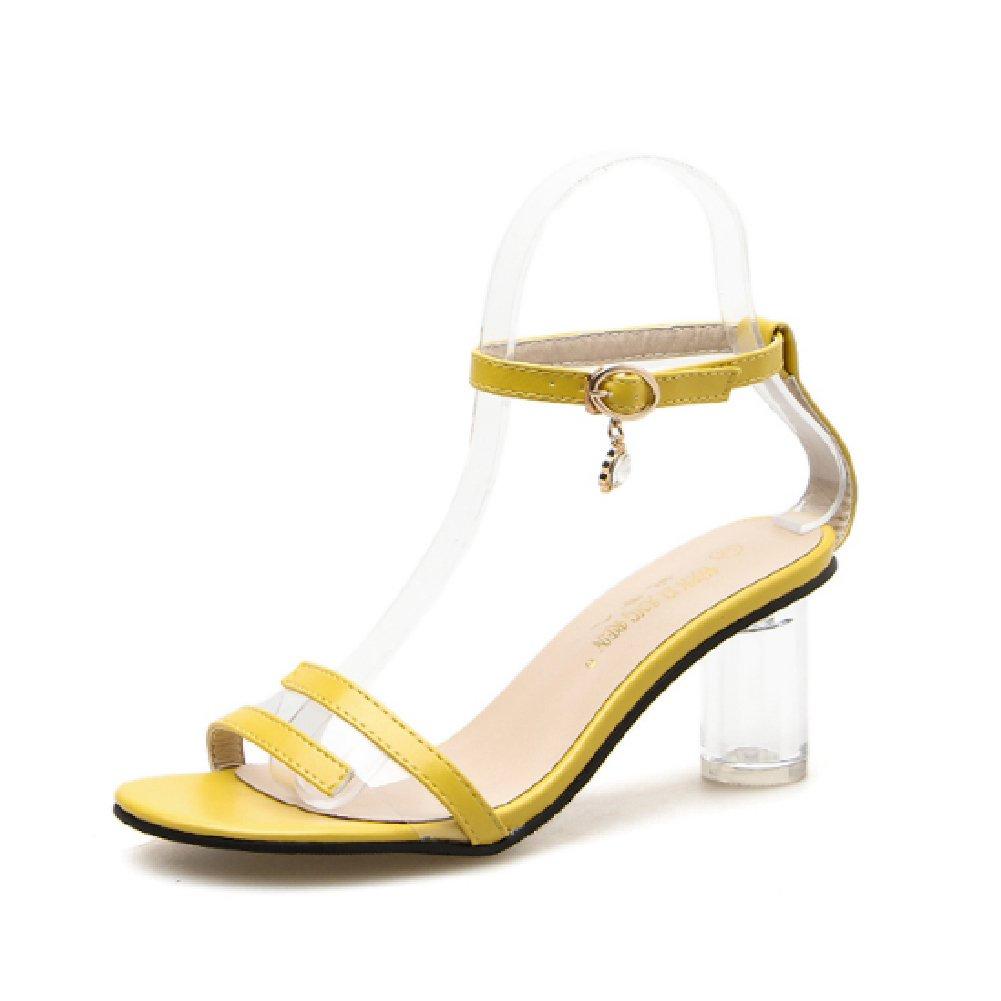 Women's Heeled Sandals Open Toe Ankle Buckle Party Dress Shoes Stylish Transparent Block Pumps