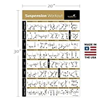 Suspension Exercise Poster Laminated - Strength Training Chart - Build Muscle, Tone & Tighten - Home Gym Resistance Workout Routine - Fitness Guide - Bodyweight Resistance from NewMe Fitness