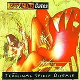 Terminal Spirit Disease ( Lp )