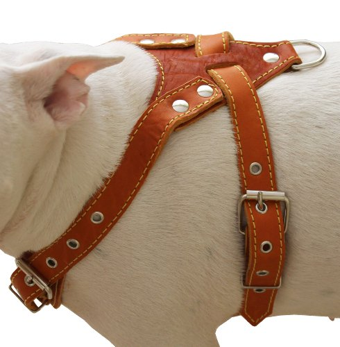 leather pitbull harness - 3