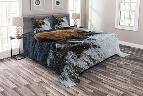 - Lohebhuic National Parks Coverlet Set King Size, Giant Bear in a Stream Alaskan Wildlife Fishing Animal Sealife Maritime, Decorative Quilted 3 Piece Bedspread Set with 2 Pillow Shams, Brown White