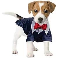FORMEG Ropa De Perro Mascotas Ropa Oto/ño Invierno Vestido para Perros Traje De Gato///Ropa para Perros Peque/ños Ropa para Mascotas Falda para Cachorros///XS SML XL