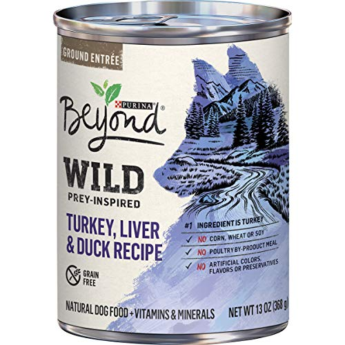 Purina-Beyond-Wild-Grain-Free-Natural-High-Protein-Adult-Dog-Food
