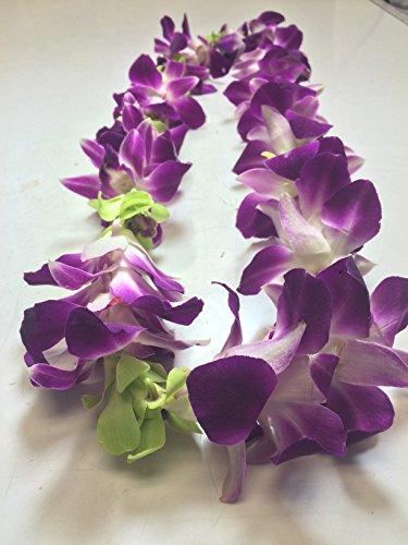 Mixed Orchid Jade Fresh Flower Lei (Jade Orchid Flower)