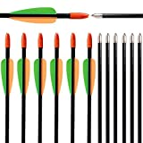 """I-Sport 28"""" Archery Fiberglass Target Practice Arrows Youth Arrows for Recurve Compound Bow 12 Pack"""