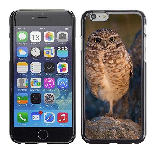 """Premio Sottile Slim Cassa Custodia Case Cover Shell // F00012860 chouette // Apple iPhone 6 6S 6G PLUS 5.5"""""""