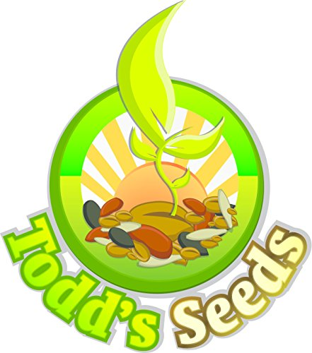 Sprouting Broccoli Seeds, One Pound - Todd's Seeds by Todd's Seeds (Image #4)