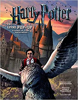 Harry Potter Un Livre Pop Up French Edition Bruce Foster