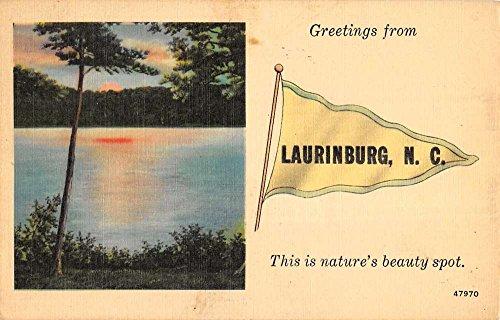 Laurinburg North Carolina Scenic Waterfront Pennant Flag Antique Postcard K38776