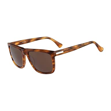 Amazon.com: Calvin Klein Platinum ck4255s-067 Chestnut ...