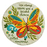 Second Chance Tomorrow Butterfly Garden Stone