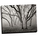 Misty Dance B&W, Fine Art Photograph By: Vitaly Geyman; One 28x22in Hand-Stretched Canvas
