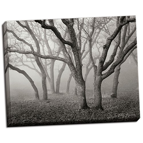 Misty Dance B&W, Fine Art Photograph By: Vitaly Geyman; One 28x22in Hand-Stretched Canvas by Gango Home Décor