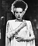 Elsa Lanchester Photo Art The Bride of Frankenstein Hollywood Scary Movie Photos 8x10
