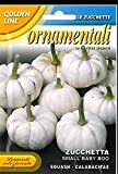 buy franchi Seeds Ornamental Squash Baby Boo Small courgette Seeds now, new 2020-2019 bestseller, review and Photo, best price $9.99
