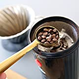 Stainless Steel Coffee Scoop Measuring Spoon with