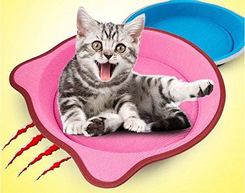 BinSanDa Prodotti per per per Animali Pet Cat Winter Warm Sofa Cushion Cat Grinding Claw 869744