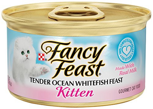 Purina Fancy Feast Kitten Tender Ocean Whitefish Feast Cat Food –  3 oz. Pull-top Can  (Pack of 24)