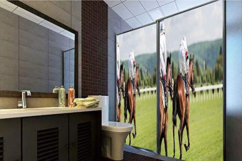 Racing Lexan (Decorative Privacy Window Film, 35.43