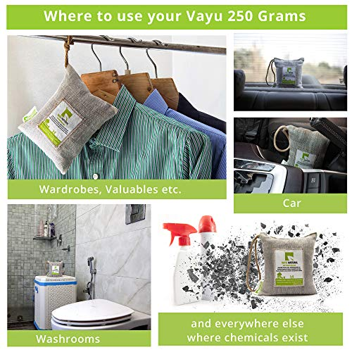 BreatheFresh Vayu Natural 100% Activated Charcoal Dehumidifier Allergen and Odor Absorber for Cars Washrooms Closets 250g