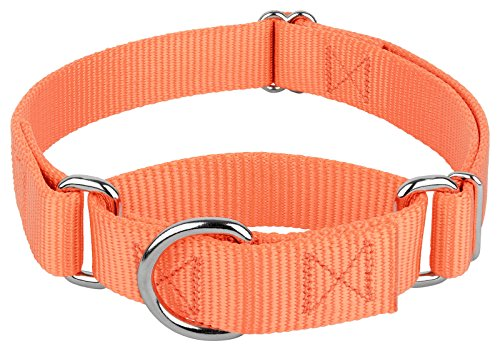 Image of Country Brook Design | Martingale Heavyduty Nylon Dog Collar - Mango - Medium