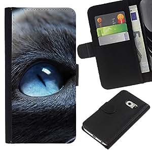 YiPhone /// Tirón de la caja Cartera de cuero con ranuras para tarjetas - Blue Eyed Cat - Samsung Galaxy S6 EDGE