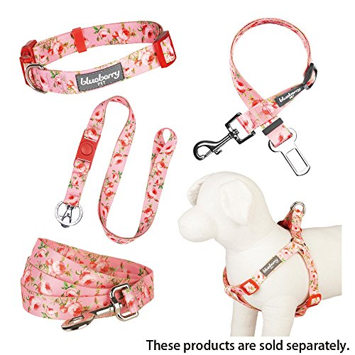 Blueberry Pet Durable Spring Scent Inspired Floral Rose Baby Pink Dog Leash 5 ft x 5/8'', Small, Leashes for Dogs by Blueberry Pet (Image #2)