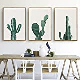 Stylish Cactus Canvas Print, Wall Art, Poster, Home Decor. 3pcs. Unframed. (50 x 70 cm / 19.7 x 27.6 in, White Background)