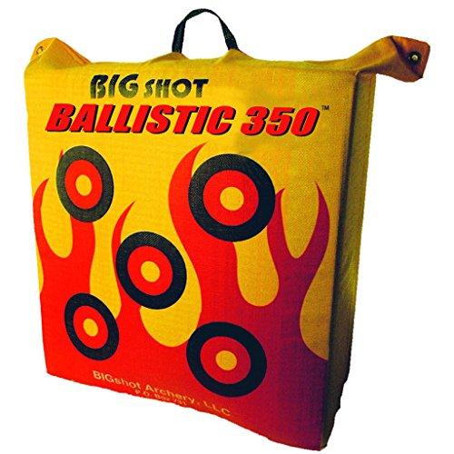 50 pound archery target - 9