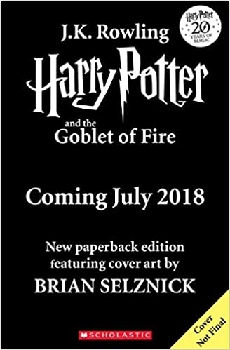 Wonderstruck by brian selznick quiz ebook coupon codes image harry potter and the goblet of fire jk rowling j k rowling harry potter and the goblet fandeluxe Choice Image