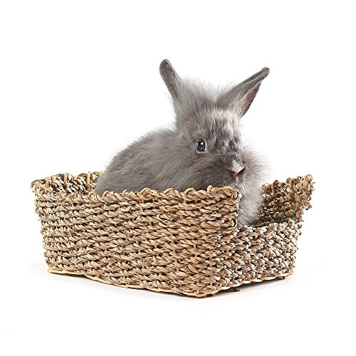 Niteangel Rabbit Grass Bed, Handmade Woven Bed, Safe & Edible for Bunny and Guinea Pig