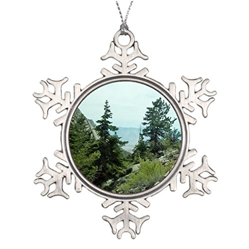 Family Christmas Snowflake Ornaments Mount Whitney Trail View #5- Fern Savannah Living Room Snowflake Ornaments Cool Snowflake Ornaments ()