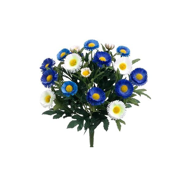 12″ Aster Daisy Bush x7(Pack of 12)