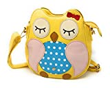 Owl Purse - Small Handbag With a Crossbody - Best Reviews Guide