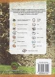 Image de Guida Salento km0. Guida alle aziende agricole sostenibili e alle antiche varietà del Salento