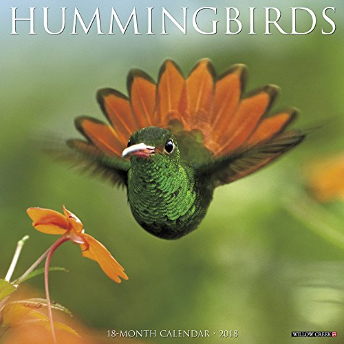 Hummingbirds 2018 Wall Calendar (Hummer Wall)