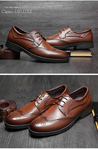 Da Men's Up Brogue 5 Brown Casual Formal Brown 6 Mens US Uomo Leather 5 Shoes dimensioni UK LXLA Lace 5 Mocassini Business Colore YwPq8