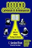 #3: Beyond Calvinism and Arminianism: An Inductive Mediate Theology of Salvation
