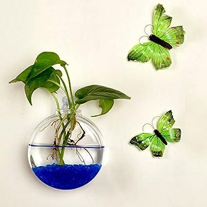 Amazon.com: Water Hep Fish Bowl Transparent Wall Hanging Aquarium Hydroponic Glass Vase Fish Bowl Aquatic Pet Supplies Wall Mount Fish Tank Decor: Home & ...