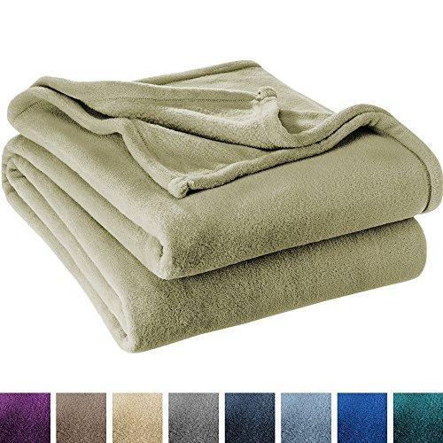 Ultra Soft Microplush Velvet Blanket - Luxurious Fuzzy Fleece Fur - All Season Premium Bed Blanket (Full/Queen, Sage) (Sage Fleece)