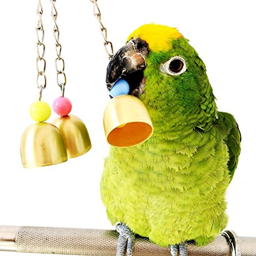 Mrli Pet Parrot Bell Toy, Bird Chew Toys with Stainless Steel Bells Which Hanging in Cage for Parrot Conure Cockatoo Macaw African Grey Amazon Budgie Parakeet Cockatiel Lovebird Finch ()
